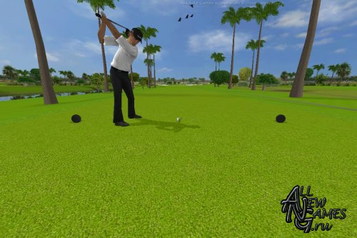 Tiger Woods PGA Tour 12: The Masters (2011/ENG)